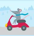 cute rat riding bike vector image vector image