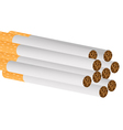 filter cigarettes vector image vector image