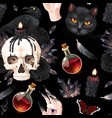 seamless pattern with raven and black cat vector image