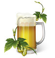 beer mug hops vector image