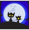 Cats sit on a glade Behind the moon shines Night vector image