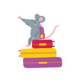 rat sitting on suitcases vector image