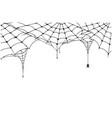 Scary spider web background cobweb background