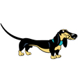 standing cartoon dachshund vector image