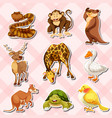 sticker set with reptiles and other animals vector image vector image