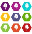 autumn tree icon set color hexahedron vector image vector image