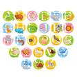 cute animal alphabet set vector image vector image