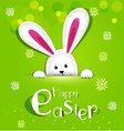 Easter bunny looking out a green background vector image vector image