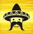 Man with sombrero vector image