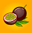 passion fruit pop art vector image vector image