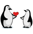 penguins with valentine heart vector image vector image