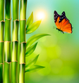 spa background with bamboo and butterfly