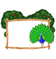 frame template with peacock in bush vector image vector image