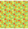 Fruits orange seamless patterns vector image vector image