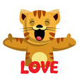 ginger cat says that she loves you on white vector image vector image