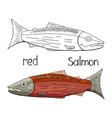 hand drawn red salmon black and white and color vector image vector image