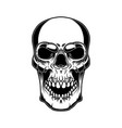 skull isolated on white background design vector image vector image