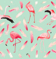 tropical flamingo seamless summer pattern feathers vector image vector image