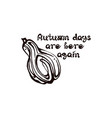 autumn hand drawn pumpkin with lettering isolated vector image vector image