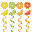collection of hand drawn elements lemon vector image vector image