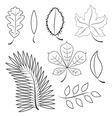 different leaves contour plot vector image