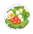 gourmet food design vector image vector image