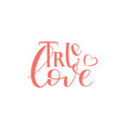 hand drawn lettering vector image vector image