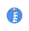 human spine with pain vector image vector image