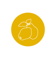 Icon Quince in the Contours vector image vector image