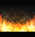 realistic flames on transparent background fire vector image