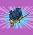 a turkey on a wooden farm wheelbarrow vector image