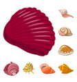 design seashell and mollusk sign set of vector image