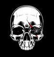 evil skull with spiderweb vector image vector image