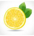 fresh juicy piece lemon isolated on white vector image vector image
