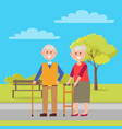 grandfather and grandmother vector image vector image