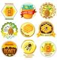 Honey Emblem Set vector image vector image