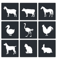 Pets icon collection vector image