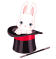 Rabbit in Top Hat Magic Trick vector image vector image
