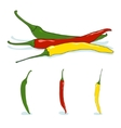 Red green and yellow hot chili pepper vector image vector image
