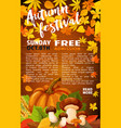 autumn harvest festival banner of fall season vector image vector image