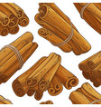 cinnamon sticks pattern vector image