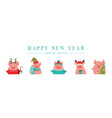 collection cute winter pigs happy new 2019 vector image