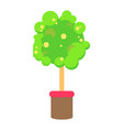 colorful pattern green tree vector image vector image