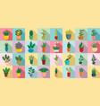 houseplants icons set flat style vector image