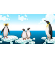 Penguins standing on iceberg vector image vector image