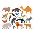 zoo wild animals cute characters isolate vector image vector image