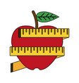 apple with measurement tape vector image vector image