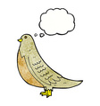 cartoon common bird with thought bubble vector image vector image