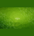 dark green background with bubbles lines design vector image