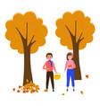 girl collects fallen leaves gardener standing vector image